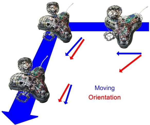 Omnidirectional movement